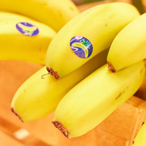 Servifruta Madrid   Fruta y verdura a domicilio Madrid   Plátano Canario